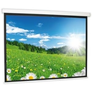 Deluxx Leinwand 16:9 (Rollo Leinwand LightLine)...
