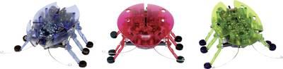 HexBug Spielzeug Roboter Bettle (477-2865)