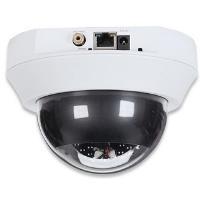 Intellinet NFD130-IR - Netzwerk-CCTV-Kamera - K...