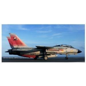 Revell Grumman F-14D Super Tomcat 1:72 Montages...