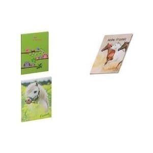 PAGNA Freundebuch Kleines Pony, 120 g/qm, 60 Bl...