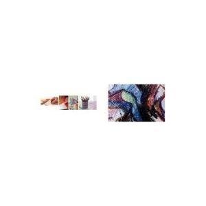 CANSON Zeichenpapier, intensiv-rot 505, 160 g, halb gefärbt, 500 x 650 mm, ideal für Bleistifte, Zeichenkohle, Tusche, - 25 Stück (321204)