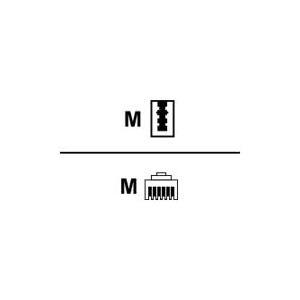 Herweck Helos - Telefonkabel - TAE-N (M) - RJ-12 (M) - 3 m (017729)