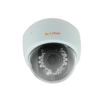 LUPUS-Electronics LUPUSNET HD - LE966 - Netzwer...