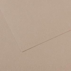CANSON Künstlerpapier Mi-Teintes, 500 x 650 mm, grau 160 g/qm - 25 Stück (321364)