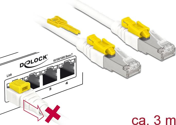 DeLOCK Secure - Patch-Kabel RJ-45 (M) bis 3,0m STP CAT 6a halogenfrei weiß (85333)