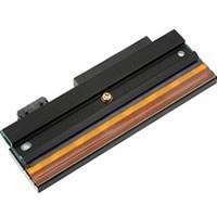 Printronix - 1 - 300 dpi - Druckkopf - für Smar...