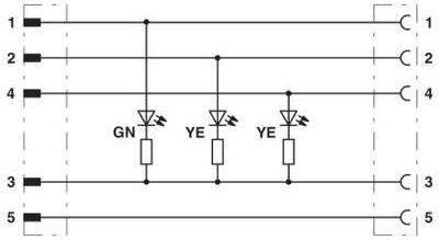 Phoenix Contact 1416147 Sensor-/Aktor-Anschlussleitung 0.60 m Polzahl: 5 1 St. (1416147)