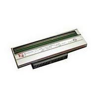 Printronix - 203 dpi - Druckkopf (252379-001)